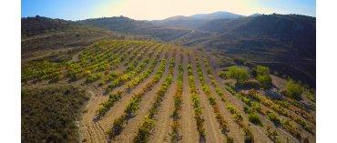 Bodegas Forcada (Miljø) (Rioja)