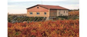Wine & Roses (Rioja)