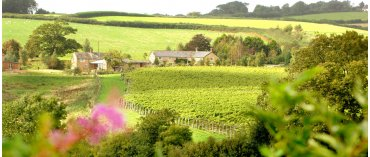 Furleigh Estate (Dorset)