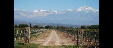 Chakana Wines (Miljø) (Mendoza)