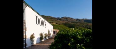 Dow's (Portvin)