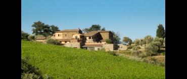 Scopone (Brunello di Montalcino)