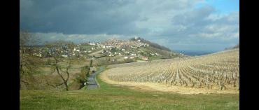 Pierre Prieur et Fils (øko) (Sancerre)