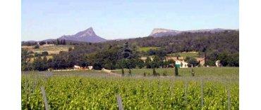 Mas de Martin (øko) (Languedoc)