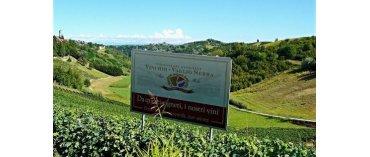 Vinchio-Vaglio Serra (Moscato frizzante)
