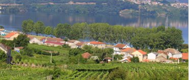 Bodega Villanueva (Rías Baixas)
